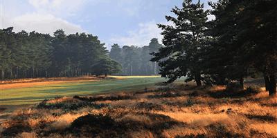 Hankley Common Golf Club
