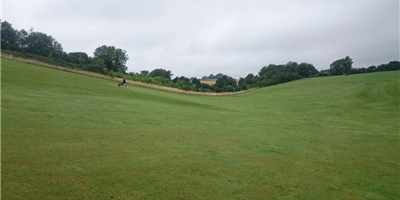 Wolfdale Golf Club