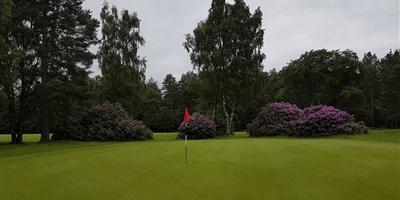 Ladybank Golf Course