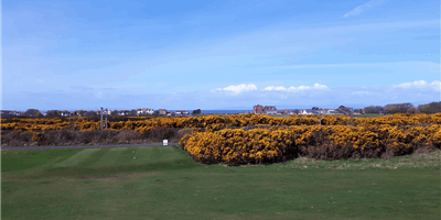 Troon Lochgreen Golf Course