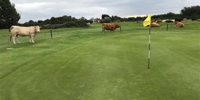 Beverley & East Riding Golf Club