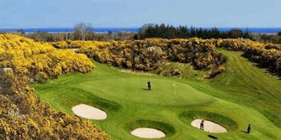 Ballinastoe Golf Club