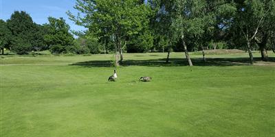 Beckenham Place Park Golf Club